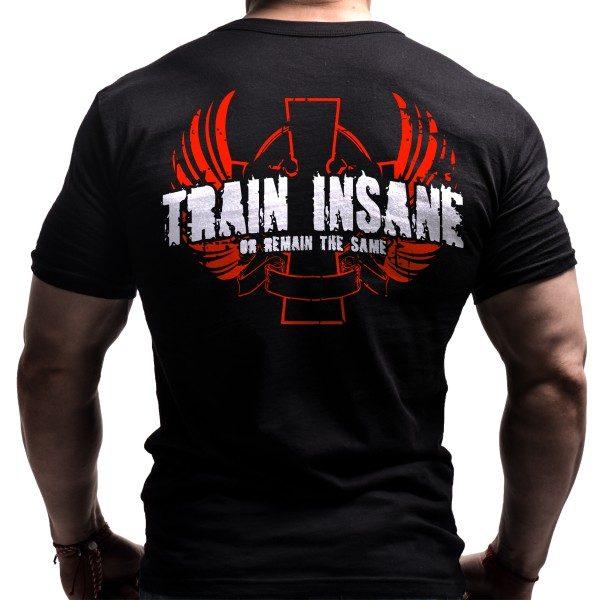train-insane-gym-tshirt-bornlioncom